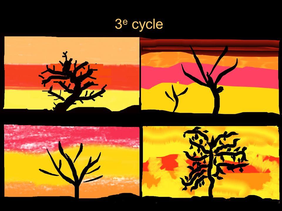 3 e cycle