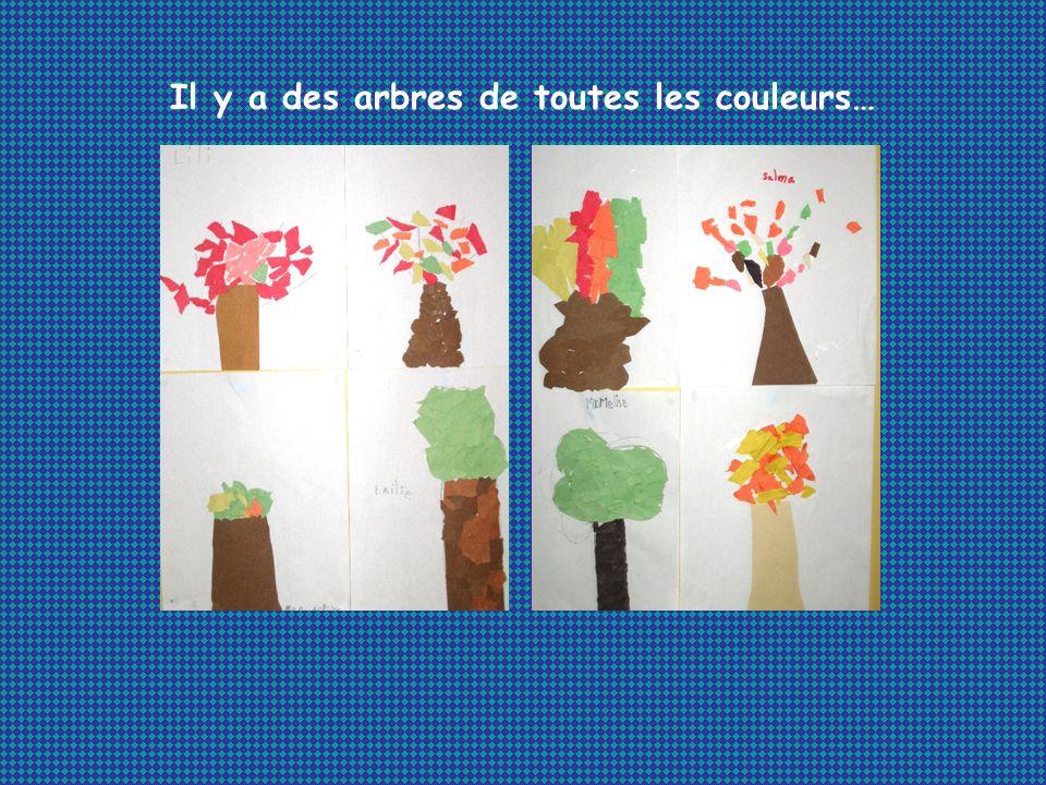 Il y a des arbres de toutes les couleurs…
