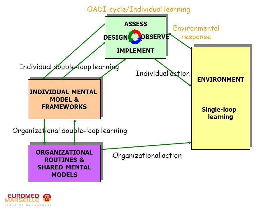 ENVIRONMENT Single-loop learning ENVIRONMENT Single-loop learning Environmental response Individual action INDIVIDUAL MENTAL MODEL & FRAMEWORKS INDIVIDUAL MENTAL MODEL & FRAMEWORKS ORGANIZATIONAL ROUTINES & SHARED MENTAL MODELS ORGANIZATIONAL ROUTINES & SHARED MENTAL MODELS Individual double-loop learning Organizational double-loop learning Organizational action OADI-cycle/Individual learning ASSESS DESIGN IMPLEMENT OBSERVE