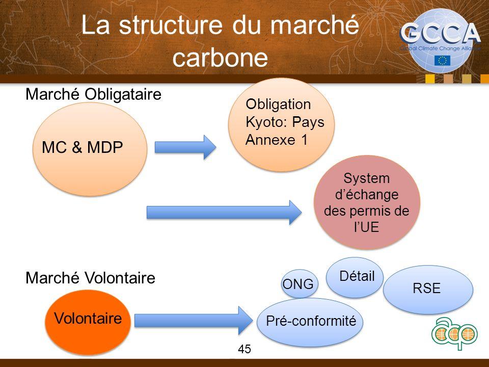 La structure du marché carbone 45 Marché Obligataire Marché Volontaire MC & MDP Volontaire Obligation Kyoto: Pays Annexe 1 System déchange des permis de lUE Pré-conformité Détail ONG RSE