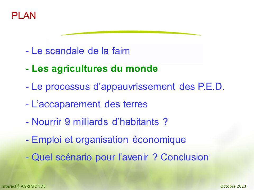 Interactif, AGRIMONDE Octobre 2013 - Le scandale de la faim - Les agricultures du monde - Le processus dappauvrissement des P.E.D. - Laccaparement des