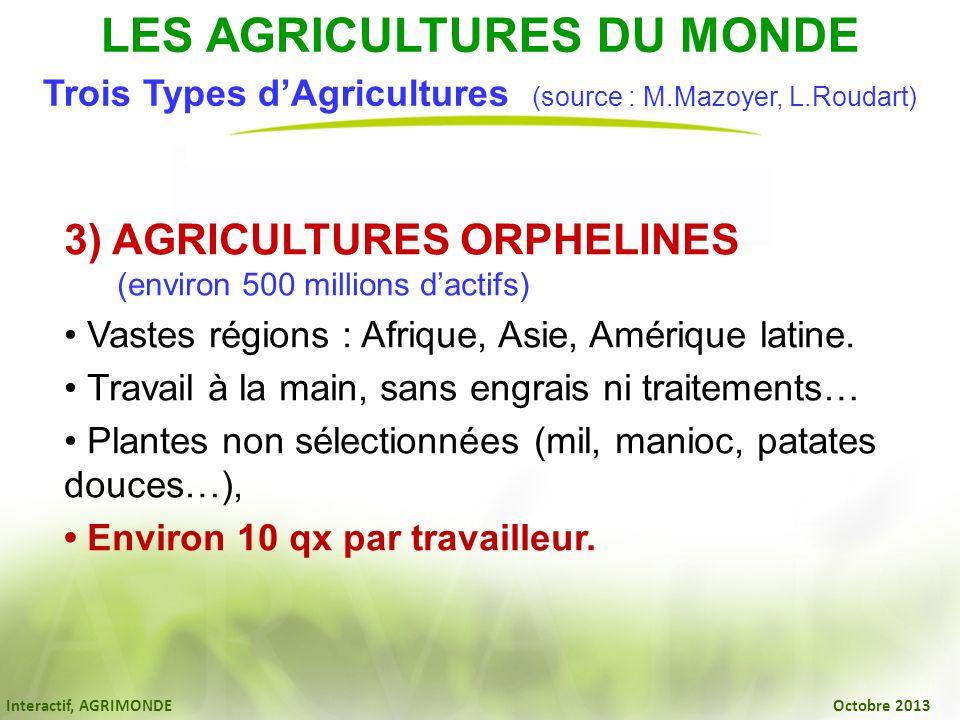 Interactif, AGRIMONDE Octobre 2013 3) AGRICULTURES ORPHELINES (environ 500 millions dactifs) Vastes régions : Afrique, Asie, Amérique latine. Travail