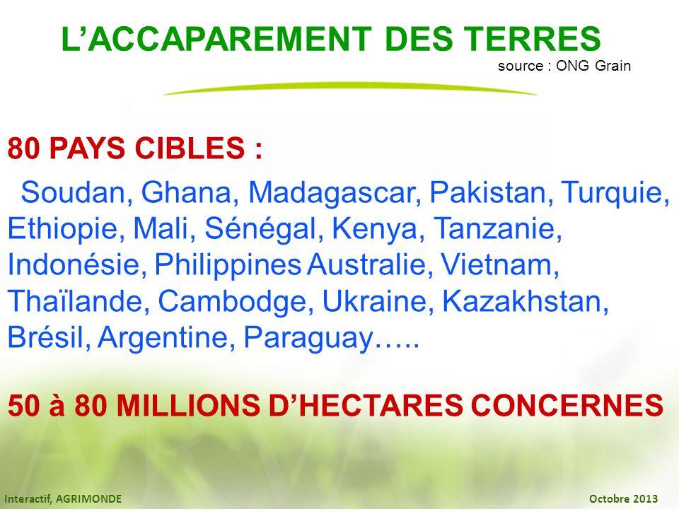 Interactif, AGRIMONDE Octobre 2013 LACCAPAREMENT DES TERRES source : ONG Grain 80 PAYS CIBLES : Soudan, Ghana, Madagascar, Pakistan, Turquie, Ethiopie