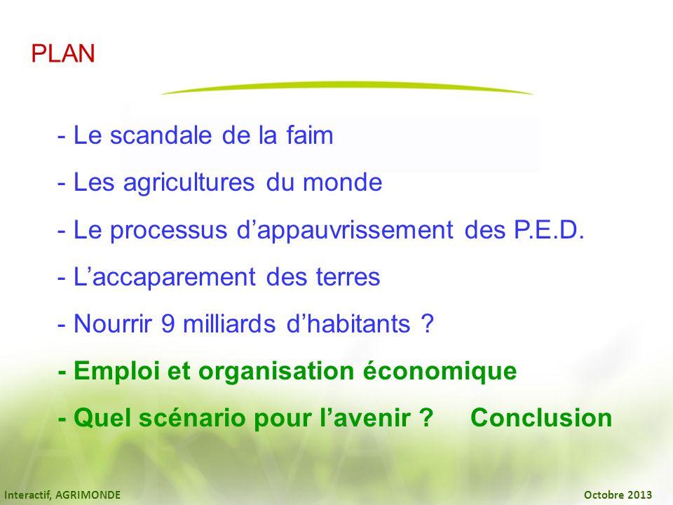Interactif, AGRIMONDE Octobre 2013 PLAN - Le scandale de la faim - Les agricultures du monde - Le processus dappauvrissement des P.E.D. - Laccaparemen
