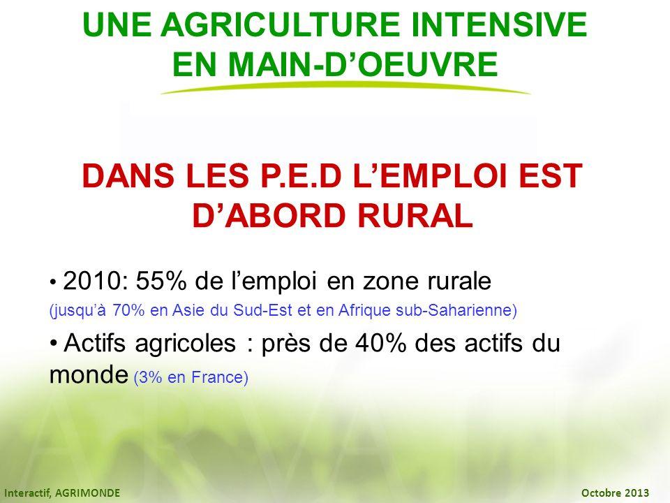 Interactif, AGRIMONDE Octobre 2013 DANS LES P.E.D LEMPLOI EST DABORD RURAL 2010: 55% de lemploi en zone rurale (jusquà 70% en Asie du Sud-Est et en Af