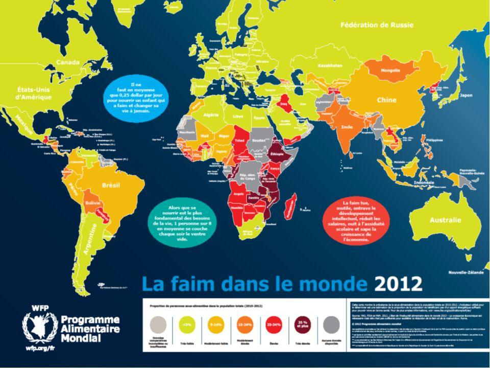 Interactif, AGRIMONDE Octobre 2013 3) AGRICULTURES ORPHELINES (environ 500 millions dactifs) Vastes régions : Afrique, Asie, Amérique latine.