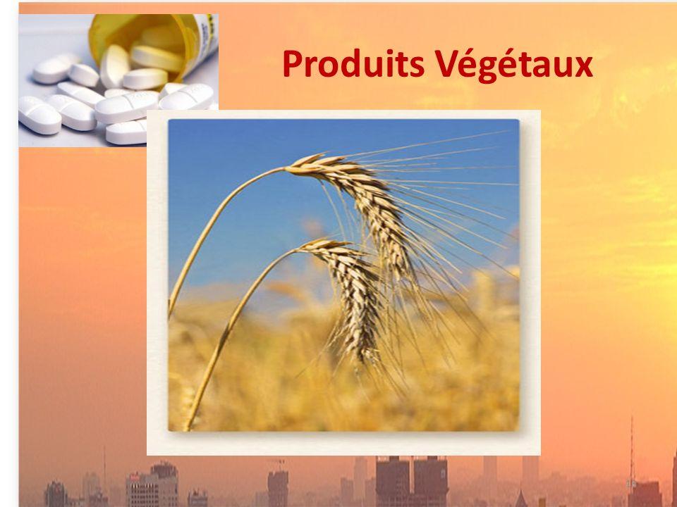 Produits Végétaux 18