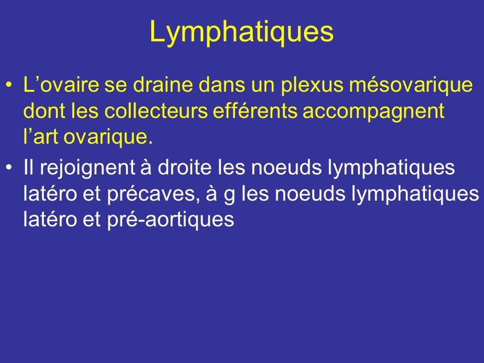 Luretère hypotonique au cours de la grossesse peut être comprimé par des veines dilatées.