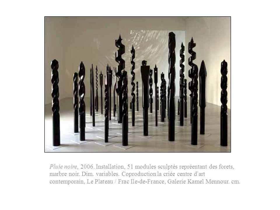 Pluie noire, 2006. Installation, 51 modules sculptés repréentant des forets, marbre noir. Dim. variables. Coproduction la criée centre dart contempora
