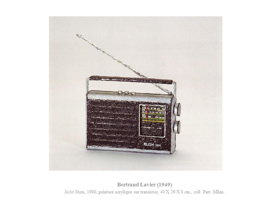 Bertrand Lavier (1949) Solid State, 1980, peinture acrylique sur transistor, 40 X 26 X 8 cm., coll. Part. Milan.