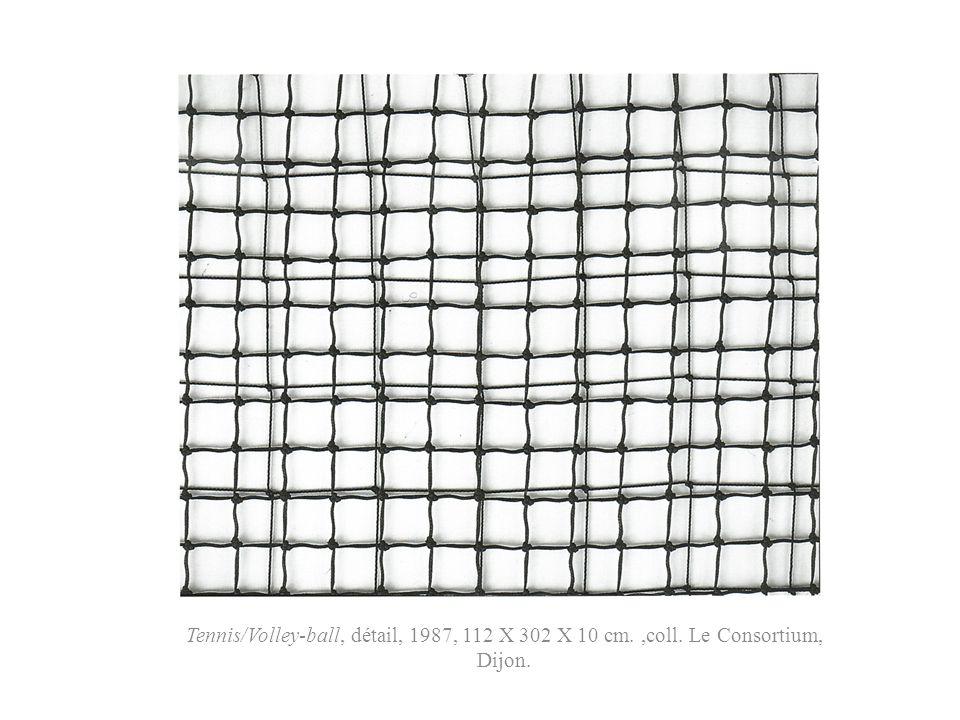Tennis/Volley-ball, détail, 1987, 112 X 302 X 10 cm.,coll. Le Consortium, Dijon.