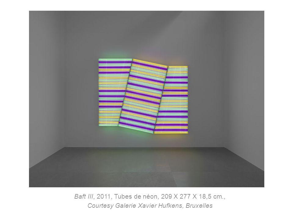 Baft III, 2011, Tubes de néon, 209 X 277 X 18,5 cm., Courtesy Galerie Xavier Hufkens, Bruxelles