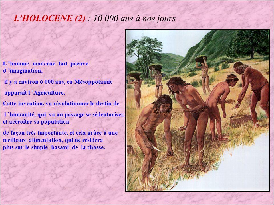 LHOLOCENE : 10 000 ans à nos jours Cette période est la plus courte de toutes dans les temps géologiques, mais cest également la plus importante pour lhumanité, puisque cest à cette période que lhomme à conquit la planète Terre.