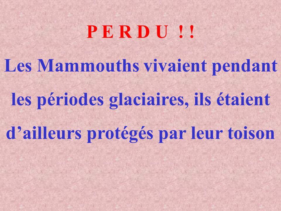 LES JEUX (Suite) Donner la bonne réponse en cliquant sur le bouton correspondant (Vous avez 45 secondes) Les Mammouths vivaient au moment des périodes glaciaires VRAI FAUX CLIQUER CI-DESSOUS POUR ARRETER LE JEU