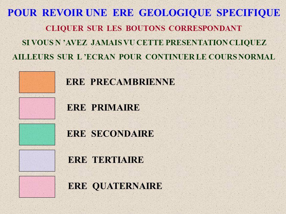 LEGENDE DE LA PAGE PRECEDENTE 0 : ERE ARCHEOZOIQUE (début 4,5 Milliards d années) et 1 : ERE PRECAMBRIEN (fin 570 Millions d années) 2 à 7 : ERE PRIMAIRE (570 à 230 Millions d années) 8 à 10 : ERE SECONDAIRE (230 à 65 Millions d années) 11 à 12 : ERE TERTIAIRE (65 à 1,8 Millions d années) 13 : ERE QUATERNAIRE (1,8 Millions d années à nos jours) POUR REVOIR LA PAGE PRECEDENTE CLIQUER SUR LE BOUTON