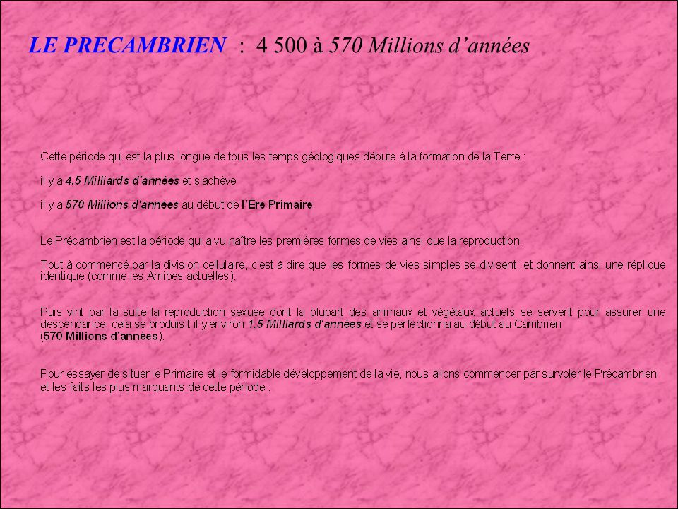 D E B U T DE LERE PRE-PALEOZOIQUE OU ERE PRECAMBRIENNE Il y a 4,5 Milliards dannées