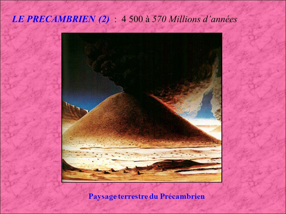 LE PRECAMBRIEN : 4 500 à 570 Millions dannées