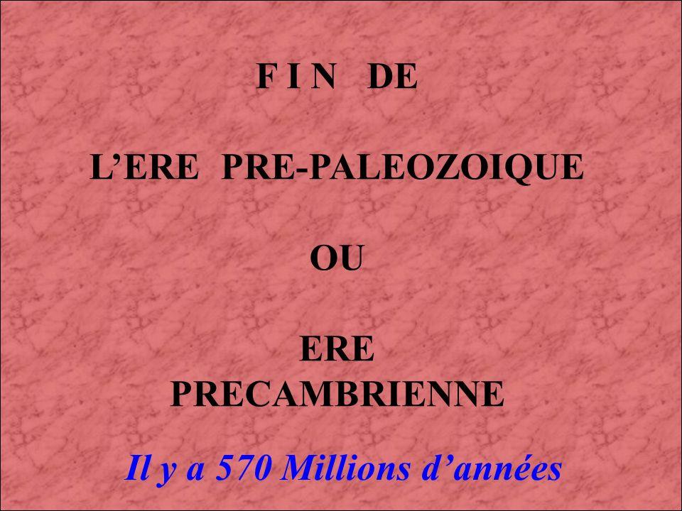LE PRECAMBRIEN (4) : 4 500 à 570 Millions dannées