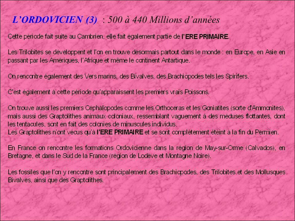 LORDOVICIEN (2) : 500 à 440 Millions dannées Graptolithes Brachiopodes