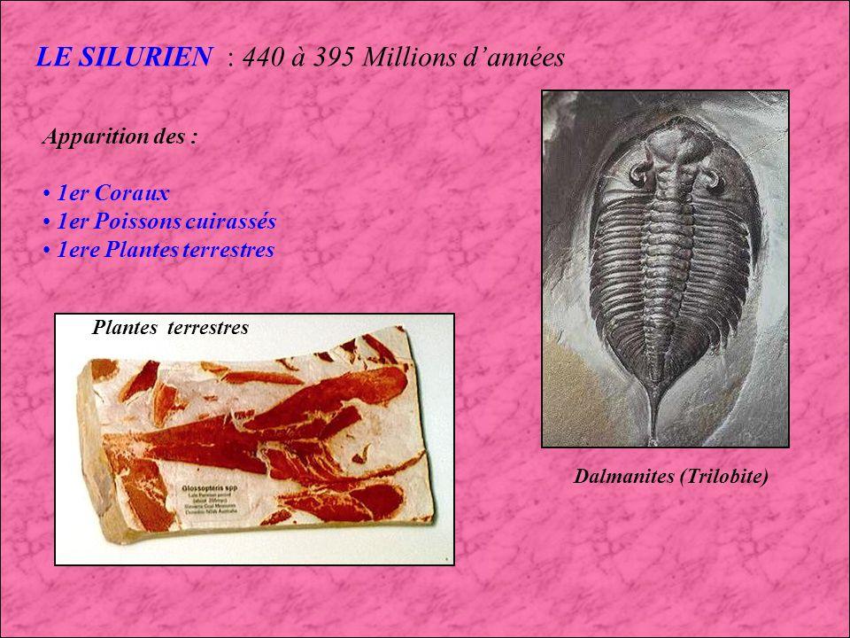 LORDOVICIEN (3) : 500 à 440 Millions dannées