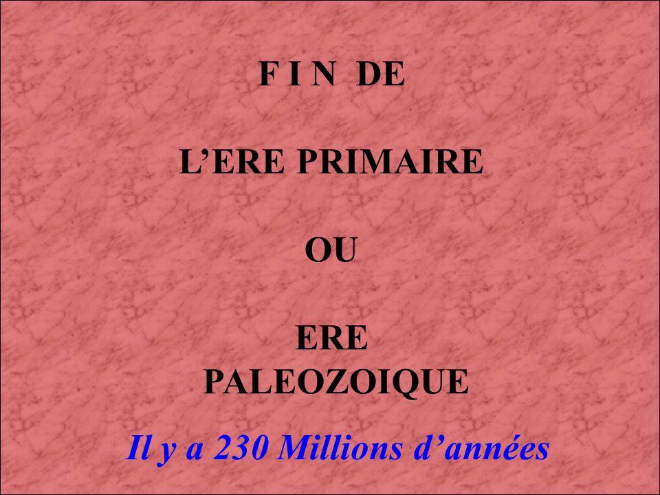 LE PERMIEN (3) : 280 à 230 Millions dannées