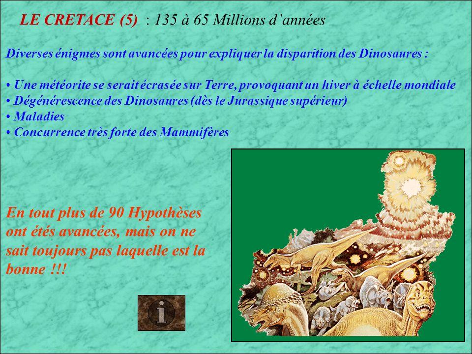 LE CRETACE (4) : 135 à 65 Millions dannées Reptiles marins du Crétacé Pterosaures du Crétacé Disparition des Reptiles marins et des Ptérosaures à la fin du Crétacé (il y a 65 Millions dannées)