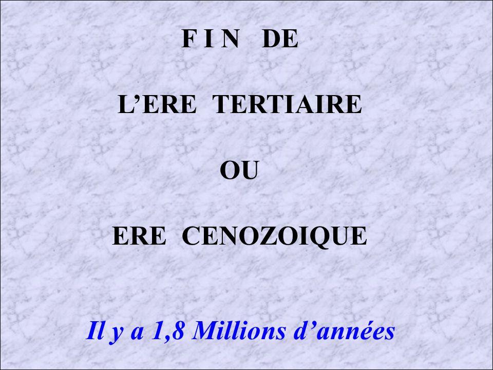LE PLIOCENE (2) : 5 à 1,8 Millions dannées