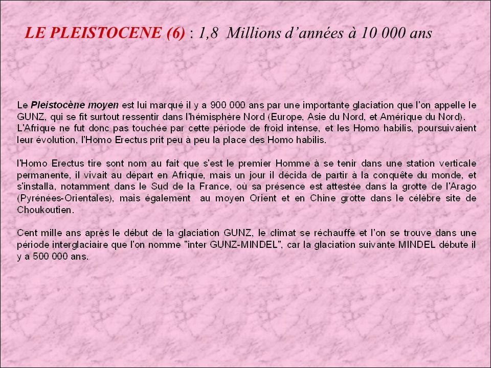 LE PLEISTOCENE (5) : 1,8 Millions dannées à 10 000 ans
