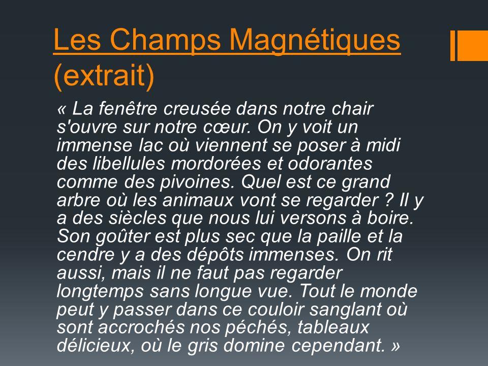 Les Champs Magnétiques (extrait) « La fenêtre creusée dans notre chair s ouvre sur notre cœur.