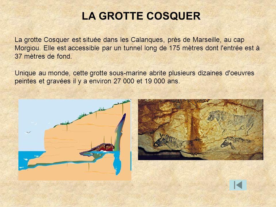 La grotte Cosquer est située dans les Calanques, près de Marseille, au cap Morgiou. Elle est accessible par un tunnel long de 175 mètres dont l'entrée