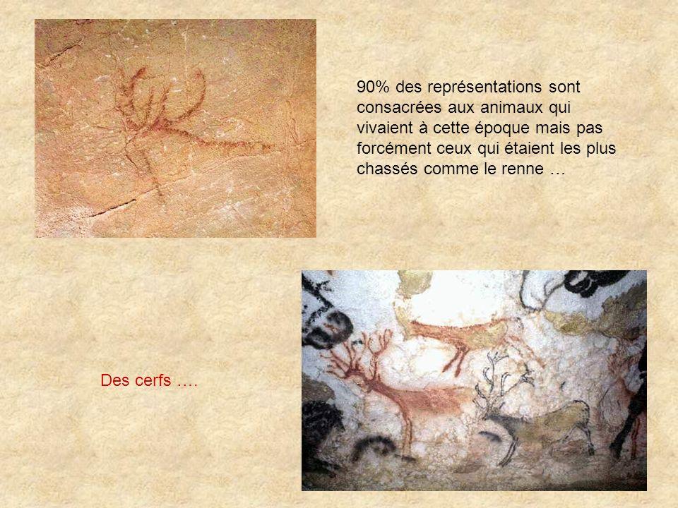 Des cerfs …. 90% des représentations sont consacrées aux animaux qui vivaient à cette époque mais pas forcément ceux qui étaient les plus chassés comm