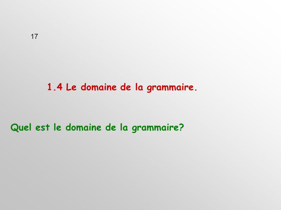 1.4 Le domaine de la grammaire. Quel est le domaine de la grammaire 17