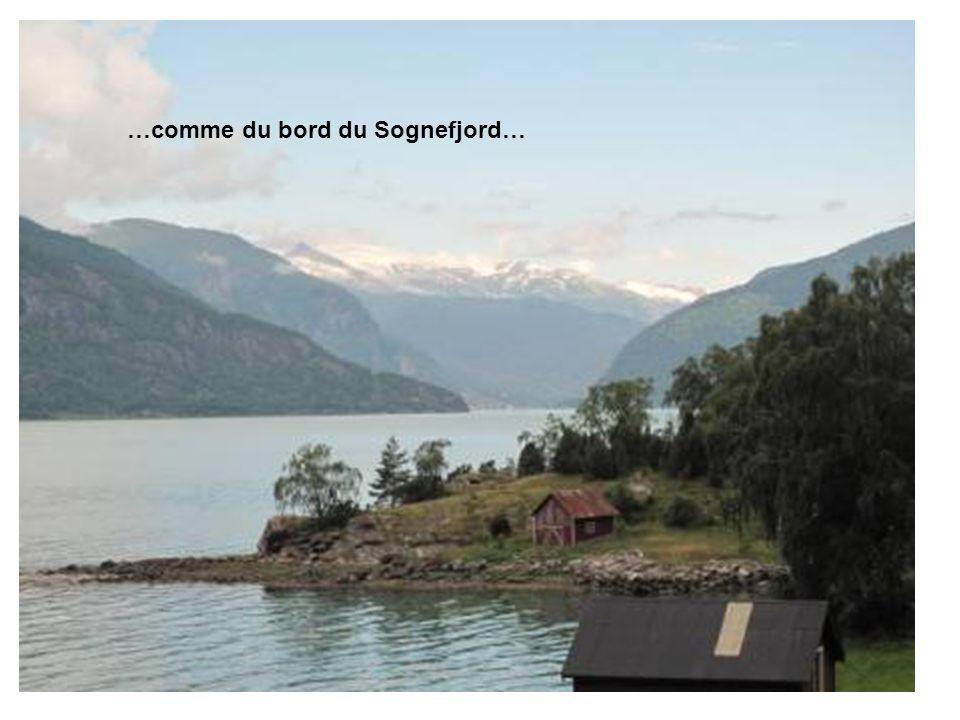 …comme du bord du Sognefjord…