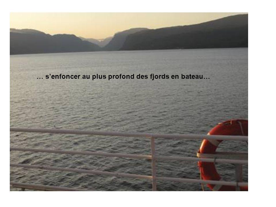 … senfoncer au plus profond des fjords en bateau…