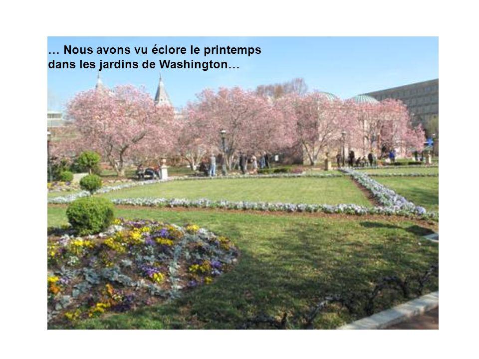 … Nous avons vu éclore le printemps dans les jardins de Washington…