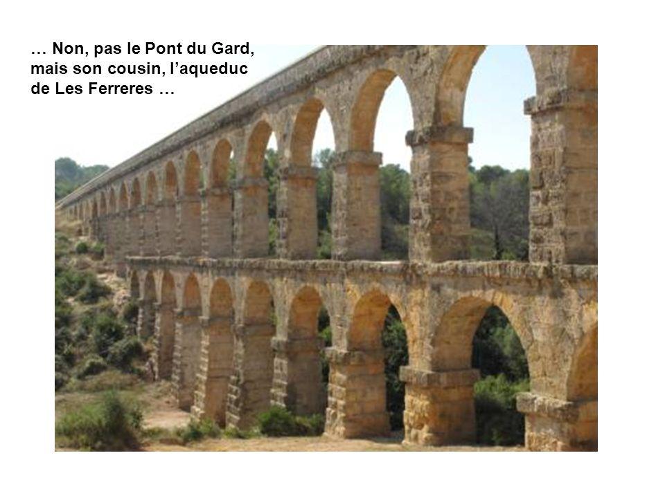 … Non, pas le Pont du Gard, mais son cousin, laqueduc de Les Ferreres …