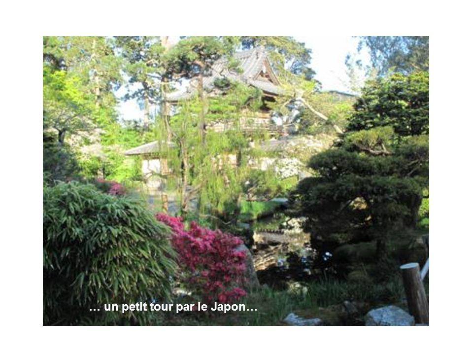 … un petit tour par le Japon…