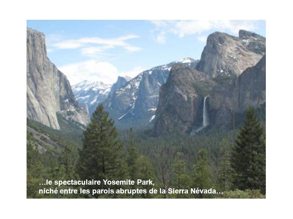 …le spectaculaire Yosemite Park, niché entre les parois abruptes de la Sierra Névada…