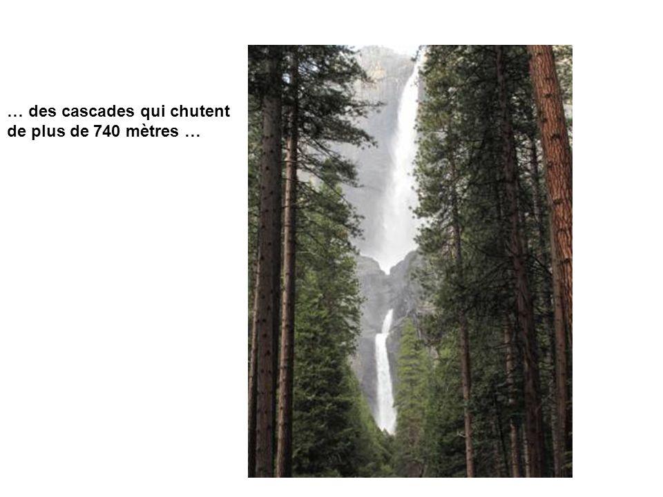 … des cascades qui chutent de plus de 740 mètres …