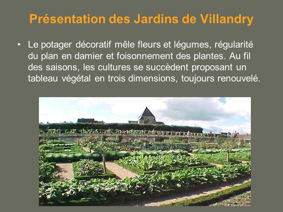 Présentation des Jardins de Villandry Le potager décoratif mêle fleurs et légumes, régularité du plan en damier et foisonnement des plantes. Au fil de
