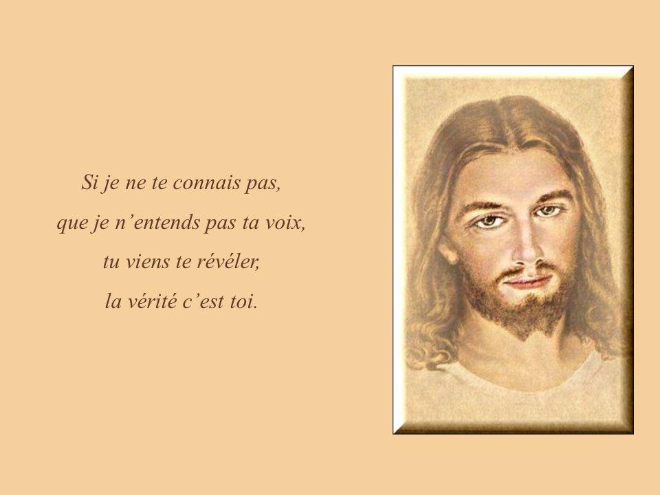 Si je vis dans le péché et reviens honteux vers toi, tu maccordes le pardon, ta paix et ta joie.