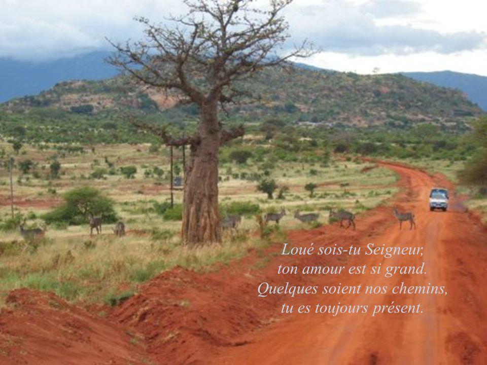 Loué sois-tu Seigneur, ton amour est si grand. Quelques soient nos chemins, tu es toujours présent.