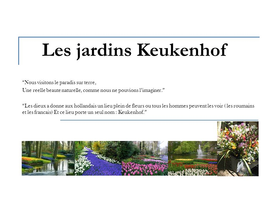 Les jardins Keukenhof Nous visitons le paradis sur terre, Une reelle beaute naturelle, comme nous ne pouvions limaginer.