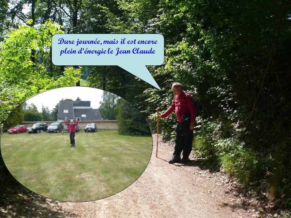Mardi 14 juin 9 h 45: SAINT GREGOIRE DU VIEVRE (entre Risle et Lieuvin) Les secrets de la vallée du VIEVRE Mardi 12 juillet 9 H 45 : ROMAN Le superbe