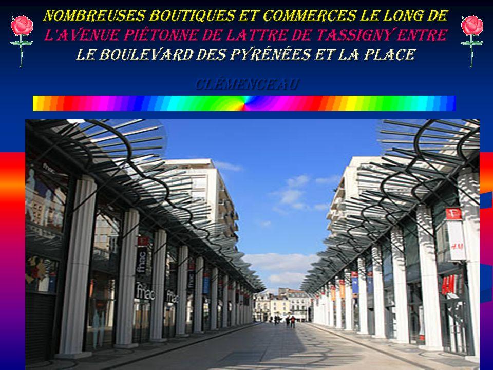 Nombreuses boutiques et commerces le long de l'avenue piétonne de Lattre de Tassigny entre le Boulevard des Pyrénées et la place Clémenceau
