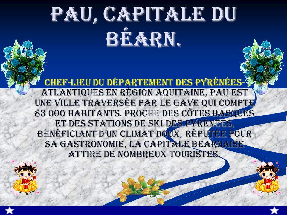 Pau, Capitale du Béarn. Chef-lieu du département des Pyrénées- Atlantiques en région Aquitaine, Pau est une ville traversée par le Gave qui compte 83