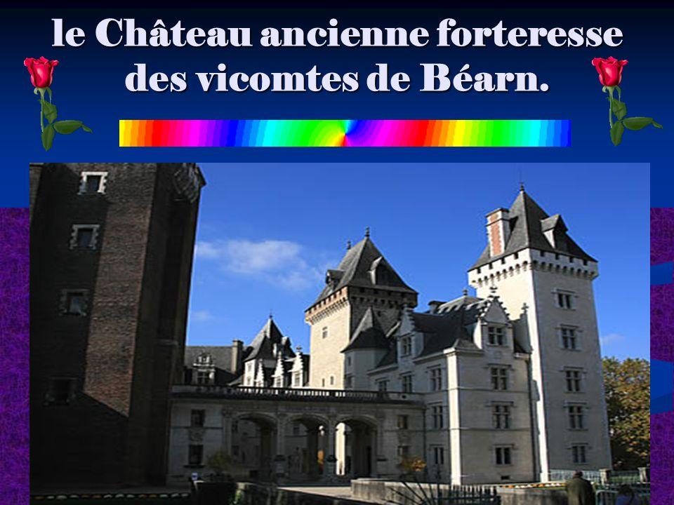 le Château ancienne forteresse des vicomtes de Béarn.