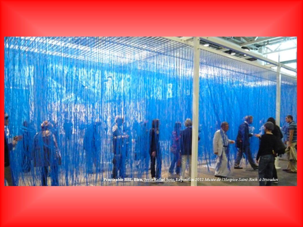 Pénétrable BBL Bleu, Jesús Rafael Soto, Exposition 2012 Musée de l'Hospice Saint-Roch à Issoudun