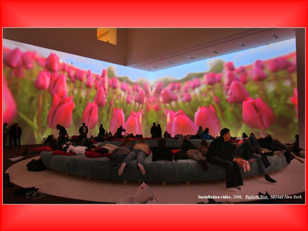 Installation vidéo, 2008, Pipilotti Rist, MOMA New York
