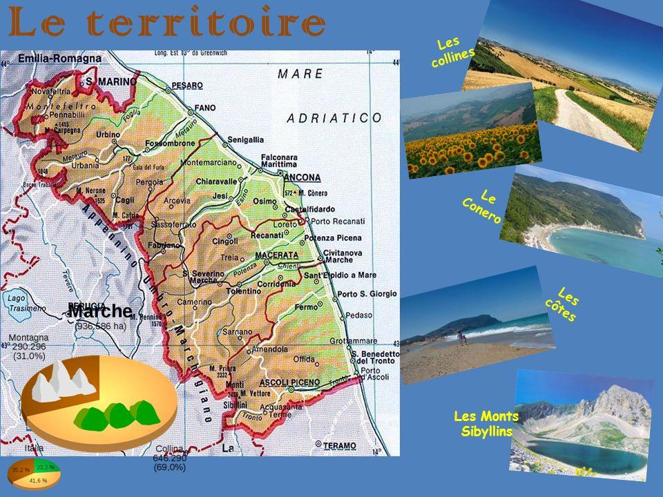 Ancône Ancône, chef-lieu des Marches, est baignée par la mer Adriatique à lest.